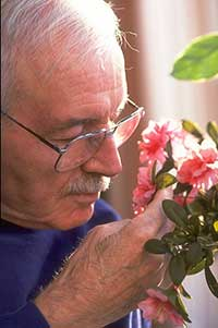 man peering at flowers